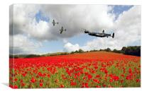 Warbird Poppy Pass , Canvas Print