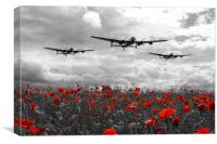 Lancaster Remembrance - Selective, Canvas Print
