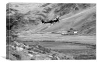 Spitfire In The Weeds - Mono , Canvas Print