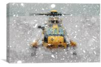 Sea King Snow, Canvas Print
