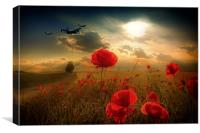 Royal Air Force Tribute, Canvas Print