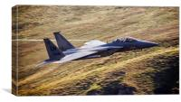 F15 from Cad West, Canvas Print