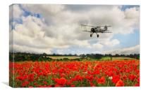 Gladiator Fly Past, Canvas Print