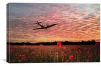 303 Fighter Ace, Canvas Print