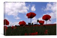 Poppys in the sky, Canvas Print
