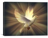 Dove of Peace., Canvas Print