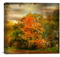 Colour Me Autumn., Canvas Print