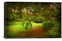 Westonbirt Estate., Canvas Print