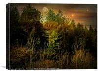Night Forest, Canvas Print