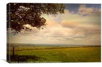 On Top of Blagdon Lakes, Canvas Print