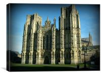 Majestic Wells Cathedral, Canvas Print
