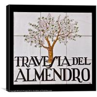 Travesia del Almendro, Canvas Print