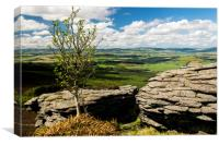 Bennachie, farmland views, Canvas Print
