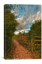 Old gate, Canvas Print