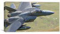 F15 C of 493rd Fighter Squadron - The Grim Reaper, Canvas Print