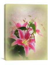 Lovely Lillies., Canvas Print