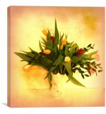 Tulips, Canvas Print