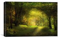 In the woods., Canvas Print