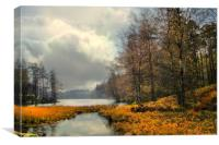 Tarn Hows in Autumn, Canvas Print