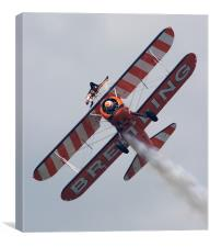 Wing Walkers, Canvas Print