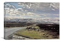 North Yorks Moors in Winter, Canvas Print