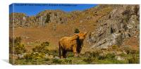 King of the Fells, Canvas Print