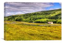 Hay Meadow in Littondale, Canvas Print