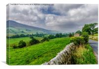 Misty Morning in Swaledale, Canvas Print