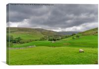 Yorkshire Dales View, Canvas Print