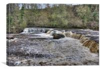 Aysgarth Falls, Canvas Print