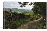 The Lane To Hawkshead, Canvas Print