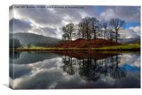 The River Brathay, Elterwater, Canvas Print
