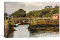 The Harbour at St Abbs, Canvas Print