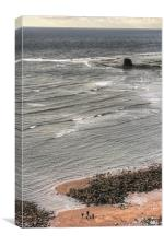 Walking in Saltwick Bay, Canvas Print
