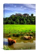 Keeping cool at the Castle, Canvas Print
