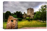 Blarney Castle and Grounds, Canvas Print