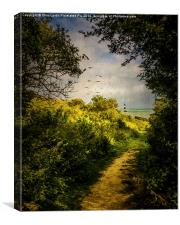 On The Path To The Sea, Canvas Print