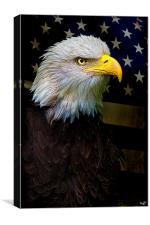 Battle Weary, an American Icon, Canvas Print
