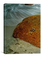 Incoming Tide at Porth Nanven, Canvas Print