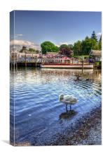 Quick Preen - Lake Windermere, Canvas Print
