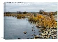 Fleetwood Nature Reserve., Canvas Print