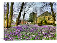 Springtime at St Chads., Canvas Print