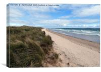 Sand Dunes between Seahouses and Bamburgh. , Canvas Print