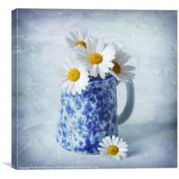 Daisies in a blue Jug, Canvas Print