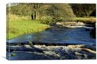 YORKSHIRE WATER'S, Canvas Print