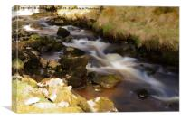 RIBBLESDALE FLOWING, Canvas Print