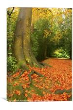 Golden Leaves and Autumn's Trees, Canvas Print