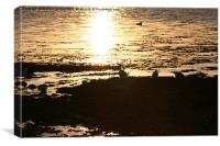 Sunset in Fairlie, Canvas Print