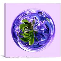 Paperweight Spherical Bluebell, Canvas Print