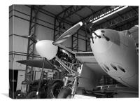 Mosquito aircraft, Canvas Print